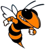 Booker T. Washington Hornets Swimming Logo