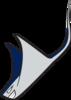 Echo Ridge Ragin' Rays Logo