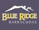 Blue Ridge Barracudas Logo