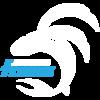 Foxfield Flyers Logo