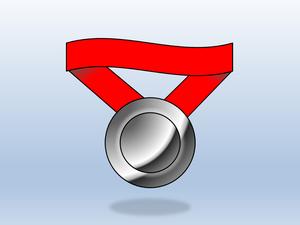 2021 Silver Medal Sponsorship