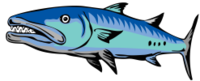 Medlock Bridge Barracudas Swim Team Logo