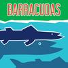Briargrove Barracudas Logo