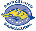 Bridgeland Barracudas Logo