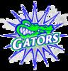 Rolling Fork Swim Team Logo