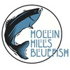 Hollin Hills Swim Team Logo