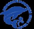 Ridgeside Dolphins Swim Team Logo