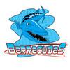South Briar Barracudas Logo