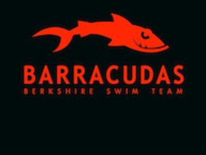 Berksire_barracudas_logo