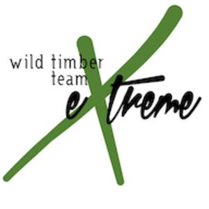 Wtte_logo