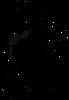 Bartlett Barracudas Logo