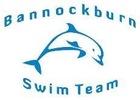 Bannockburn Dolphins Logo