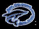 Glen Burnie Park Dolphins Swim Team Logo