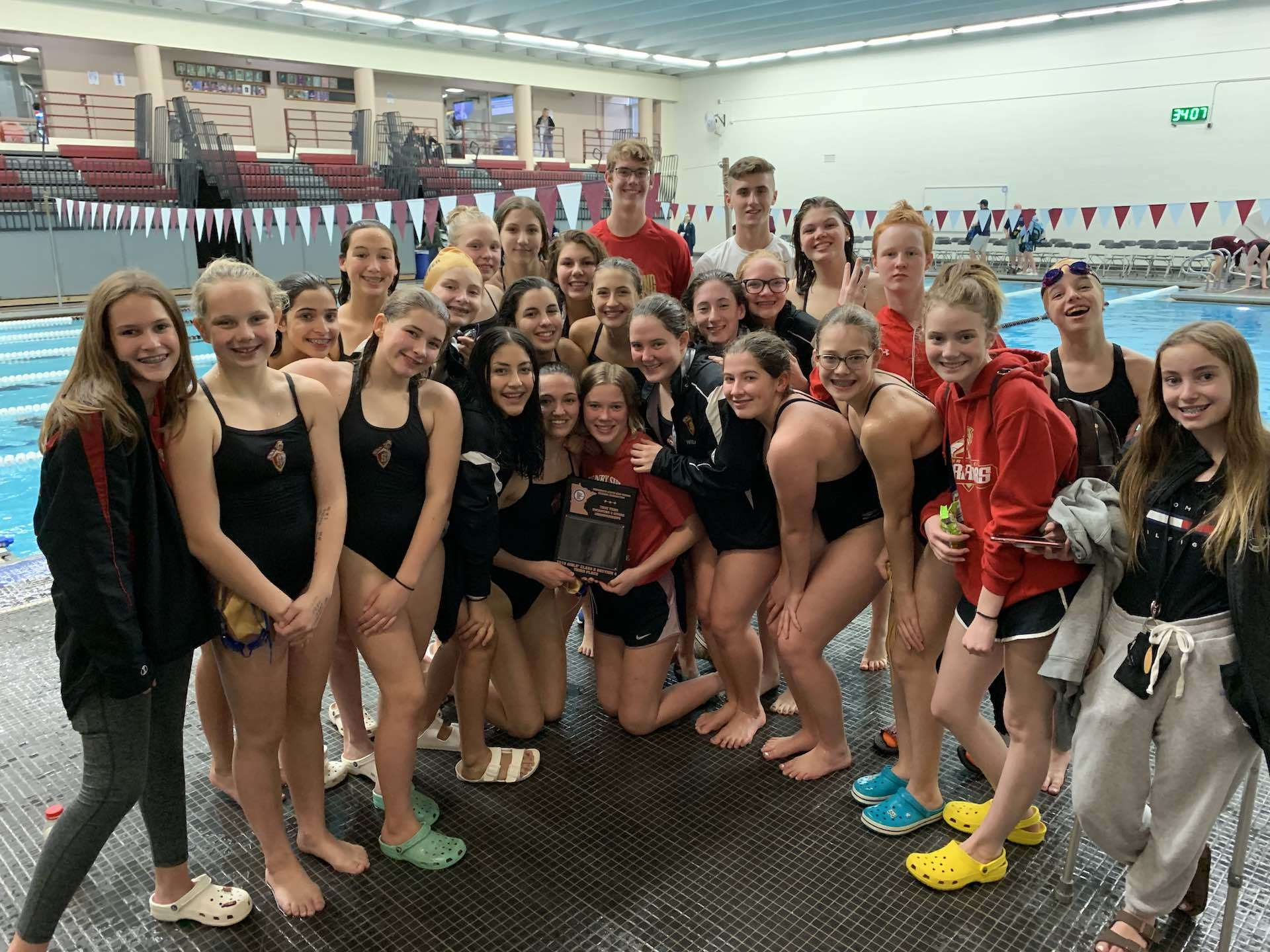 2019 Sibley High School Girls Swim & Dive Portrait of Section 4A True Team - 3rd Place