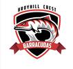 Broyhill Crest Barracudas Logo