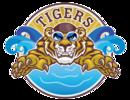 Tiger Splash Swim Team Logo