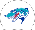 Bethesda Barracudas Logo