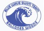 Balcones Woods Blue Wave Logo