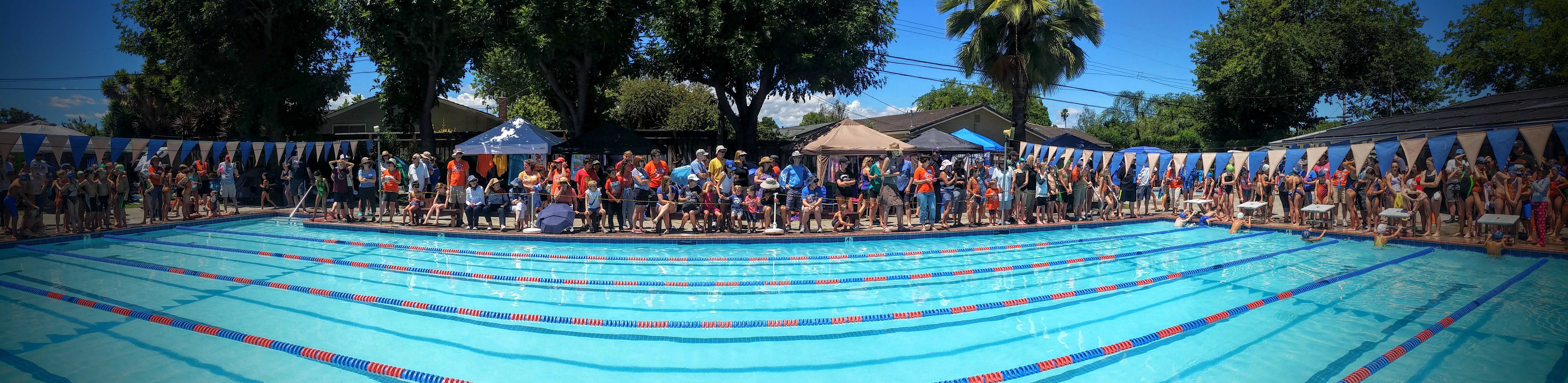 swim team try-outs