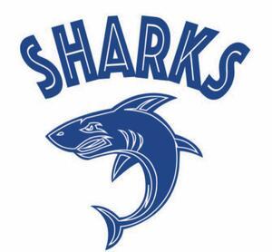 Old_pike_swim_logo