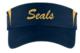 Seals_visor