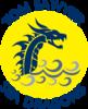 Tom Sawyer Swim Team Logo