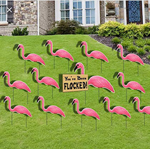 Flock Removal - donation
